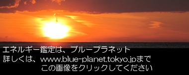 http://www.blue-planet.tokyo.jp